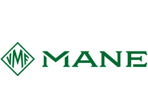 Mane (opens in a new tab)