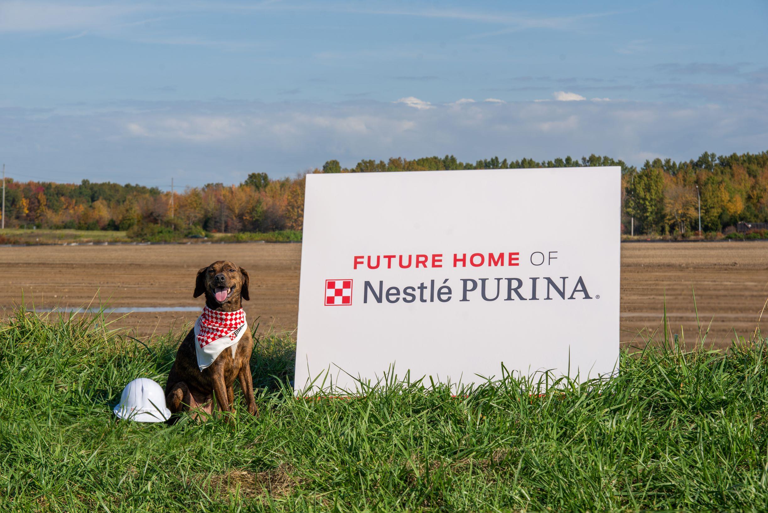 Future home of Nestlé Purina